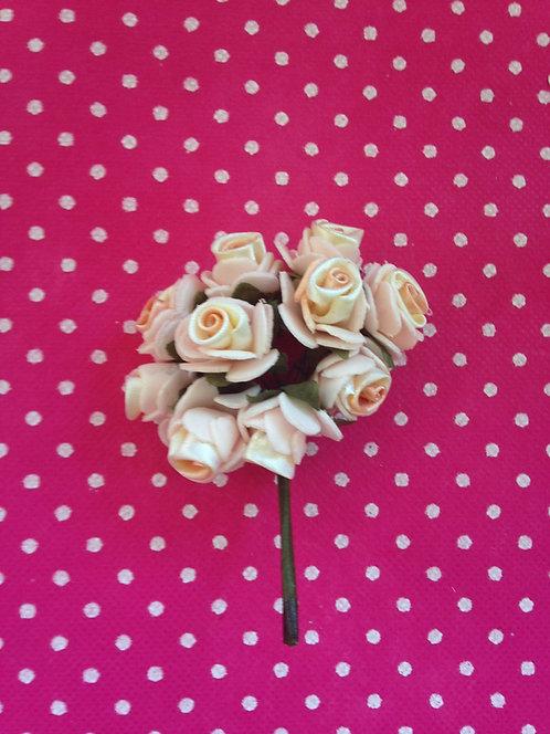 Dvobojne ružice boja breskve i naranč.