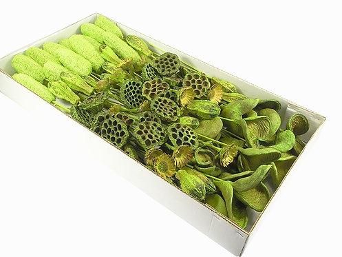 Suho bilje - egzotika - boja pistacije