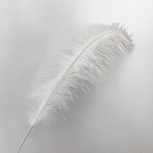 Pero bijelo 50-55 cm