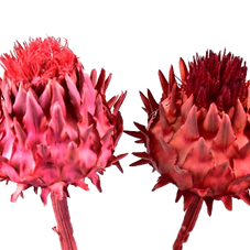 Umjetno i suho cvijeće