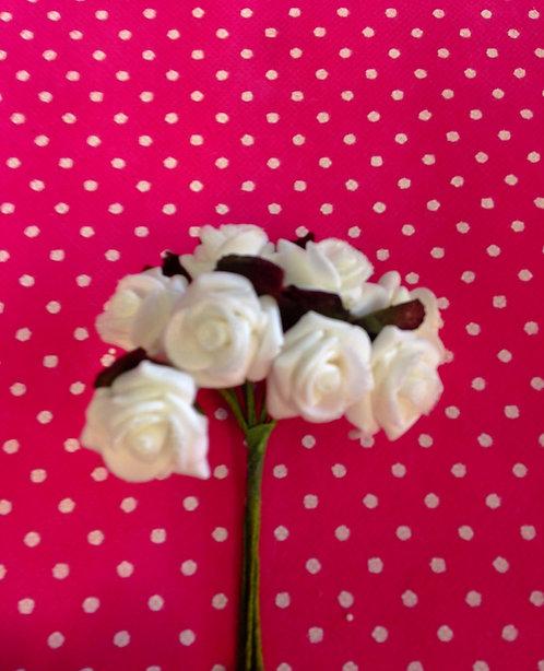 Ružice bijele 2553