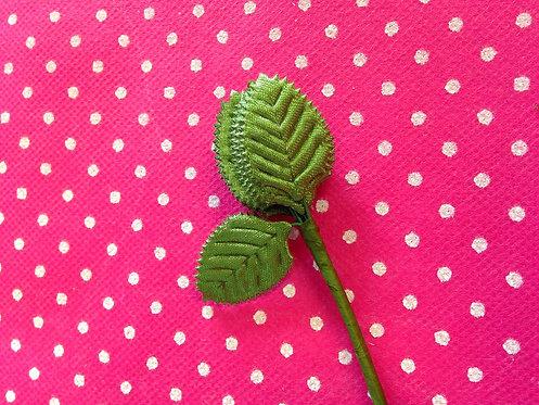 Mali zeleni listić