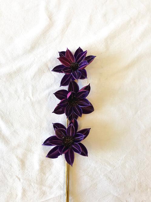 Suho cvijeće-ljubičasto-3 kom