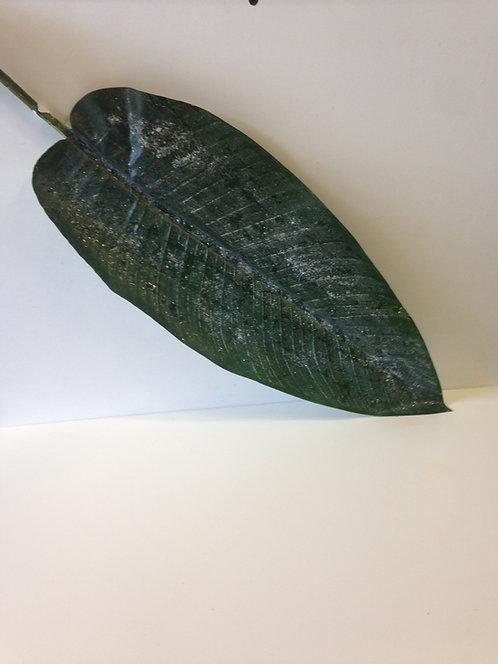 List zeleni dugački 2096