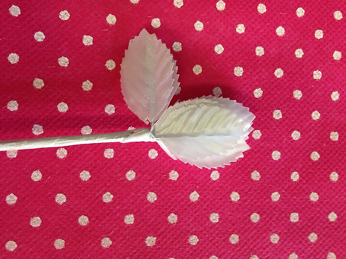Bijeli mali listić