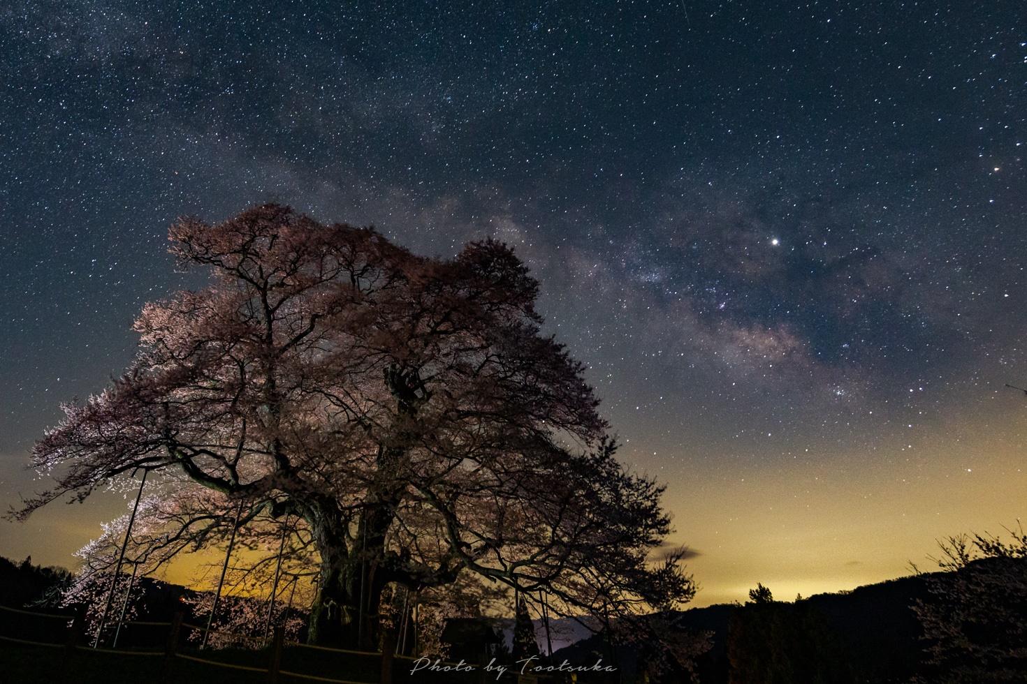 醍醐桜と天の川銀河
