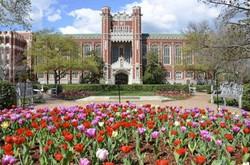University of Oklahoma Alumni News
