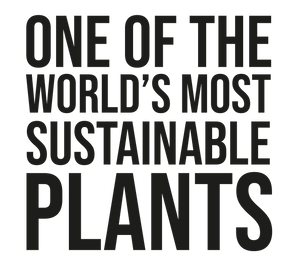 Sustainable Plants B.png