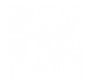 Sustainable Plants W .png