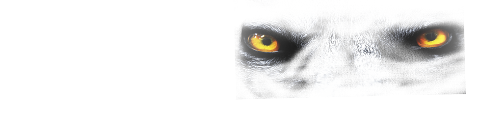 NM Slaughter House Wolf EYES
