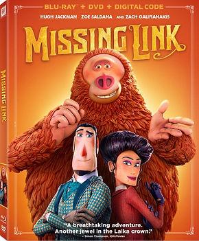 missing-link_edited.jpg