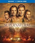 Supernatural%20S15_edited.jpg