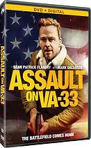 Assault on VA-33.jpg