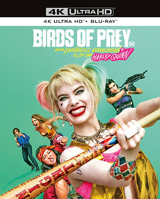 Birds of Prey.jpg