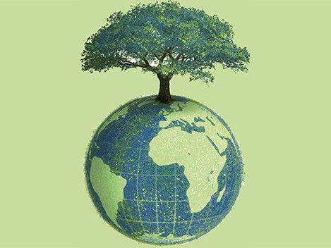 Environmental Standards: Ethically Distinguishing Your Organisation