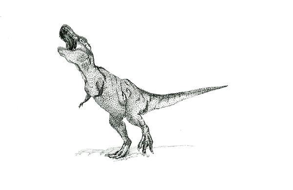 t-rex_edited.jpg