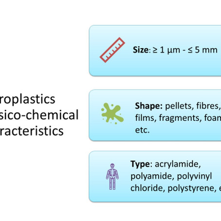 Microplastics in freshwater - A webinars' summary