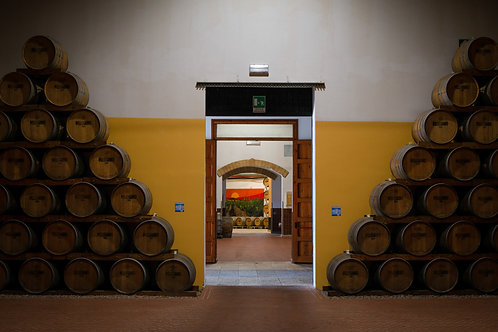 4x6in Print, Sicilian Winery