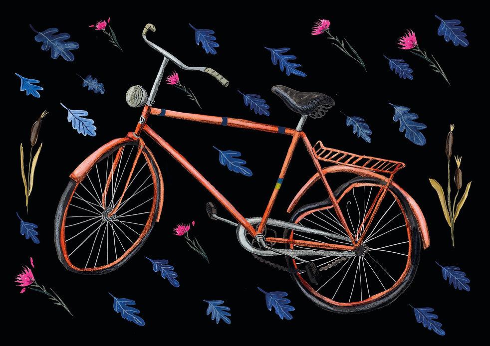 till hemsida cykel 3b.jpg
