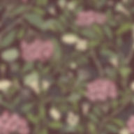 HYBBE Lilac 55024.jpg