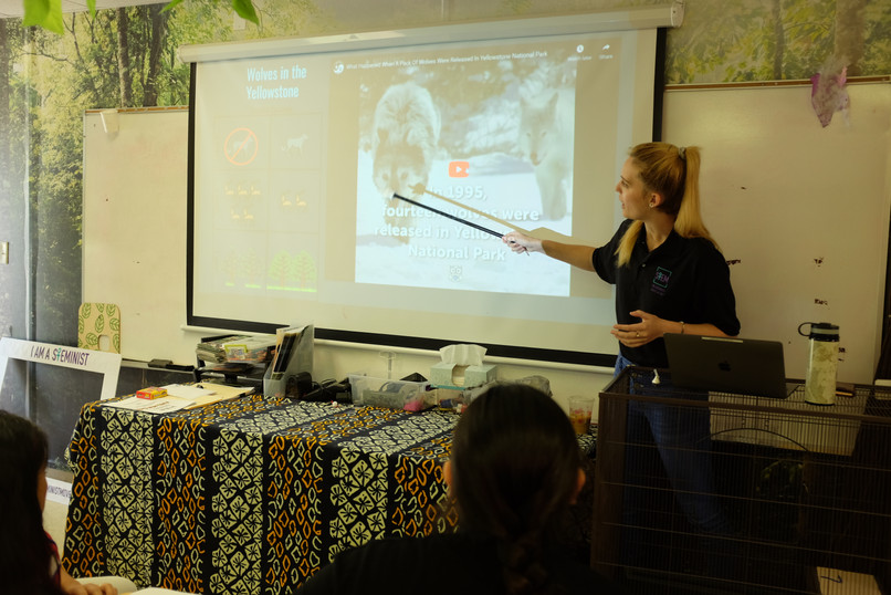 Samantha Lefebvre presents Steminist Movement January 2020 Workshop