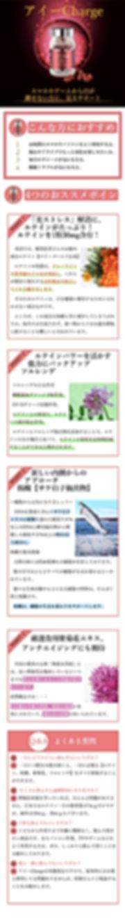 詳細アイー 日本語.JPG
