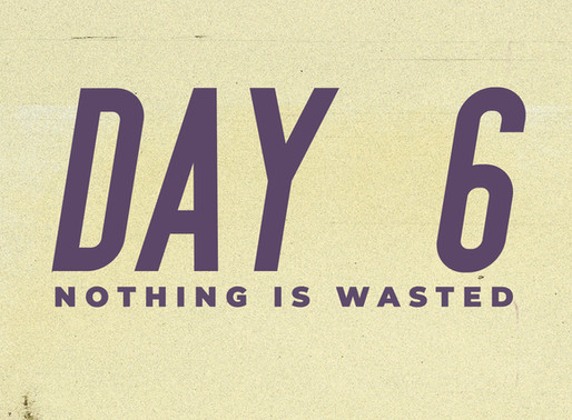 Day 6: Nothing is Wasted
