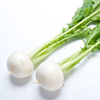 白色の野菜分析