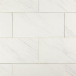 master shower tile and guest bath floor.