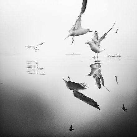 4 Dancers in the Fog.jpg