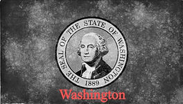 washington-state-flag-600x360_edited.jpg