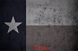 texas flag bw.jpg