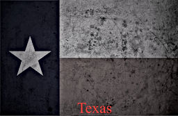 texas flag bw.jpg