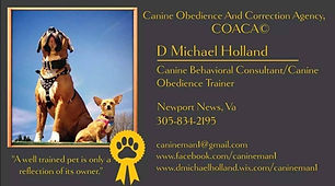 canine obedience and correction agency.j
