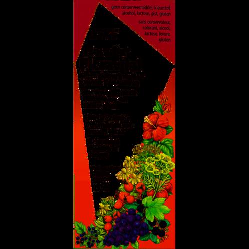 Floradix IJzer-elixir 250 250 ml