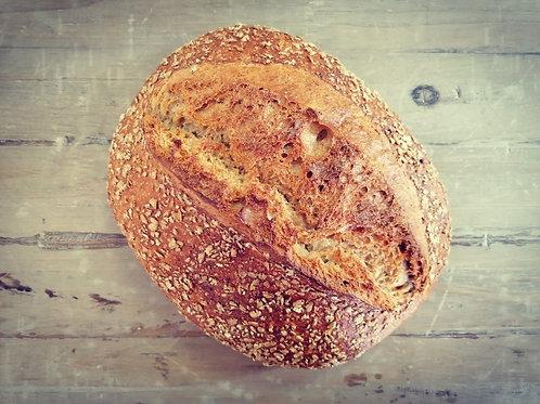 Brood van de dag (+800g)