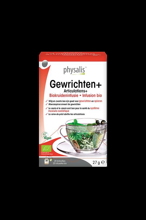 Physalis Gewrichten infusie 20 builtjes