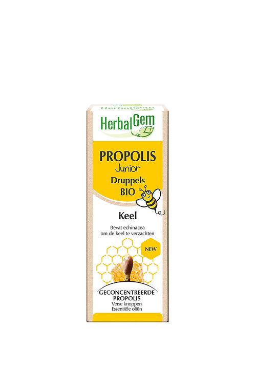 HBG Propolis Junior 15 ml
