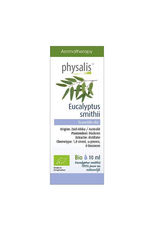 Physalis Eucalyptus Smithii 10ml