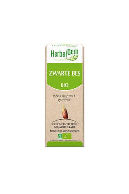 HBG Zwarte Bes 50 ml