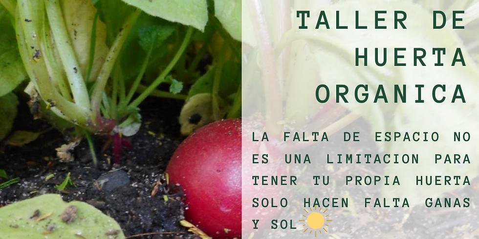 """""""Taller de huerta orgánica"""""""