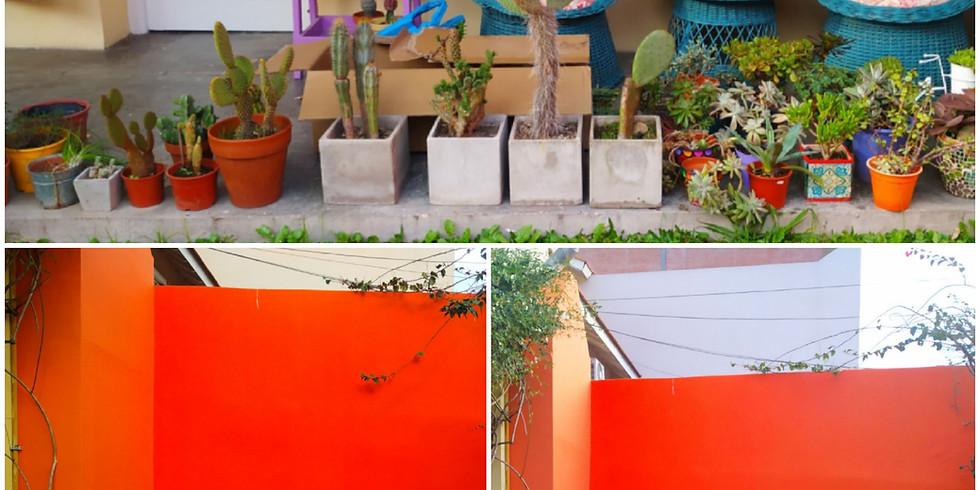 """""""Diseña tu jardín"""""""