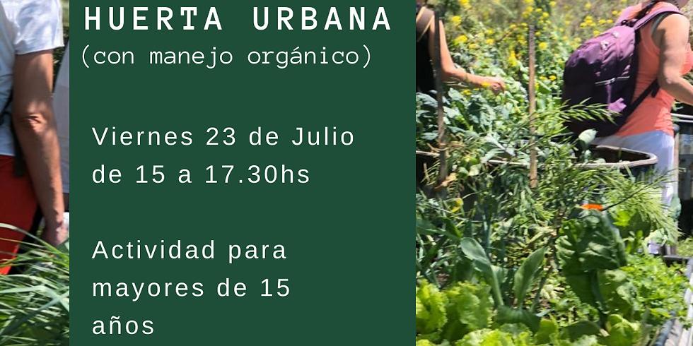 Taller de Huerta Urbana (con manejo Orgánica)