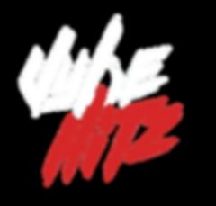 vybeHitz WHITE no Bck.png