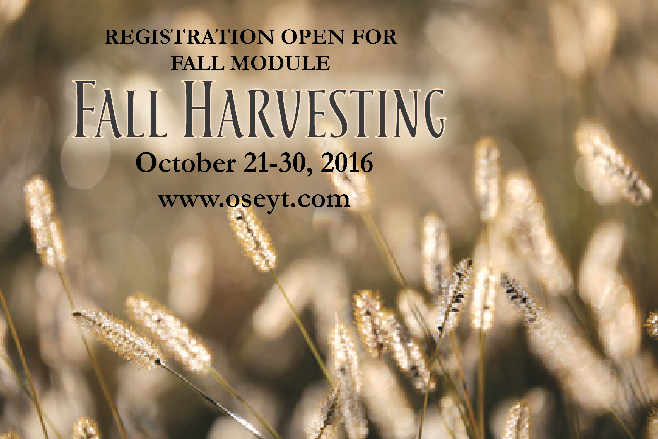 Fall Harvesting October 2016-01