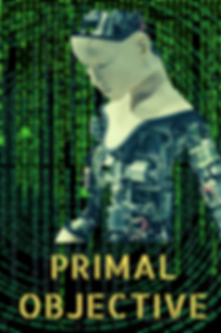 PRIMAL OBJECTIVE.png