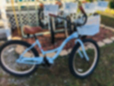 Beach Cruiser Bike Rental in Crystal River, FL