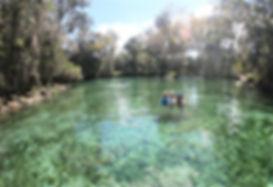 Crystal River Kayak Rentals