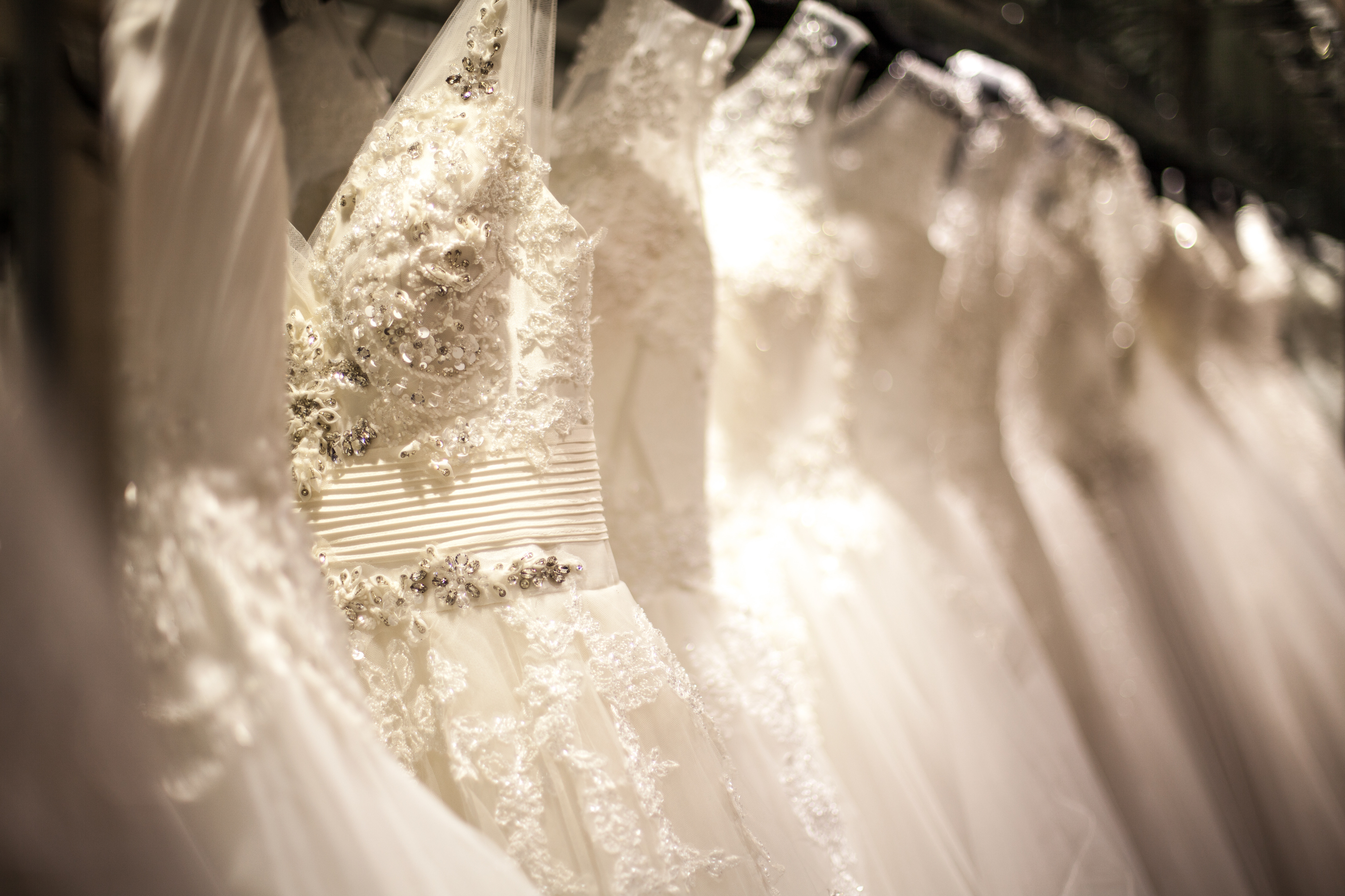 Ziva Wedding gown fitting