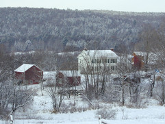 Z February 2006.jpg